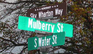 Sign: Water Street in front of Stewart Field is now also known as Sky Wharton Way. Beacon photo by Josie Sellers