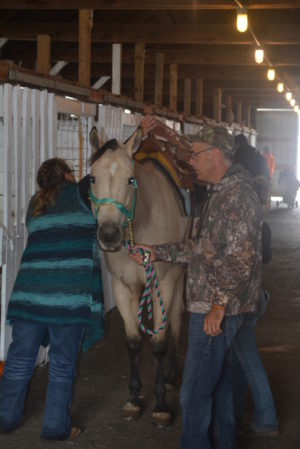Spice is pictured getting prepared to go for a ride with Hailie Brookover. Josie Sellers   Beacon